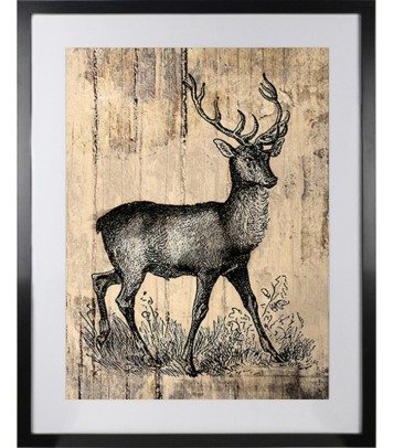 Stag Deer Picture | Newry Artwork